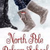 Cover Reveal: North Pole Reform School by Jaimie Admans