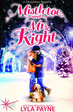 Review: Mistletoe and Mr. Right by Lyla Payne